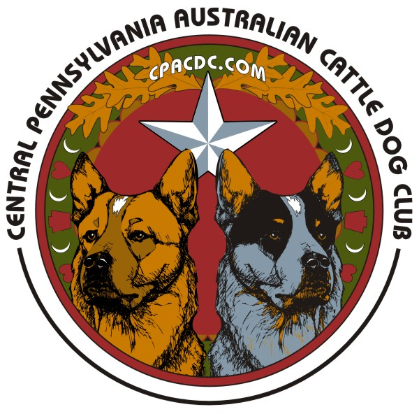 CPACDC – Central Pennsylvania Australian Cattle Dog Club